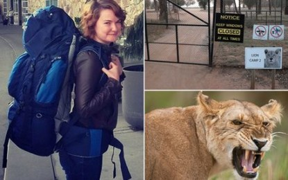 Lion Park: American tourist killed after beast jumps through open car window