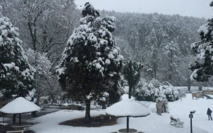 Snow in the Berg (Photos)
