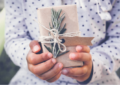 How to indulge in a more sustainable Christmas – tips from SA's green experts