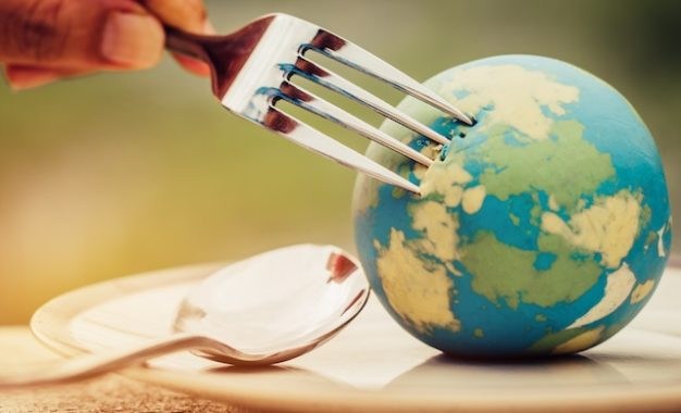 What SA Dietitians say about the planetary health diet